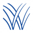 Wellspring Consulting Logo