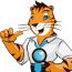 Wildcat SEO logo