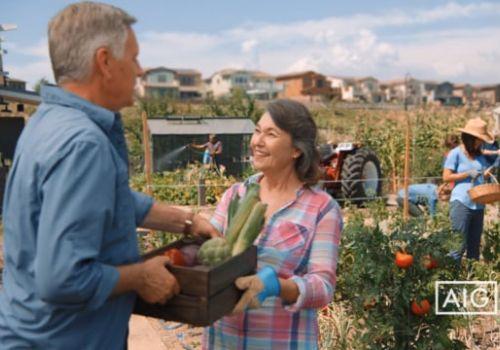 AIG - Community Garden
