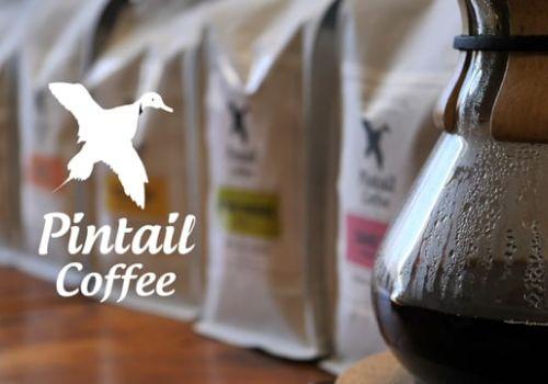 Pintail Coffee (Top Notch Cinema)