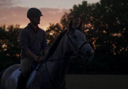 Dengie Horse Feeds | 2018 Brand Film | Client Edit