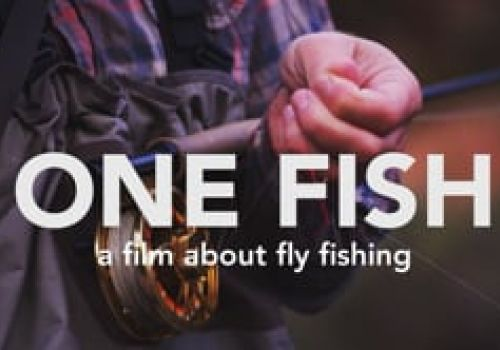 ONE FISH - a film about fly fishing