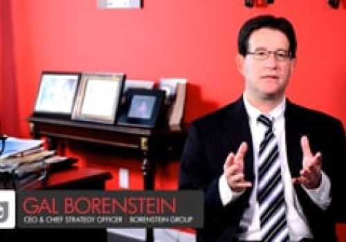 Borenstein Group Clients: B2B and B2G Success Stories