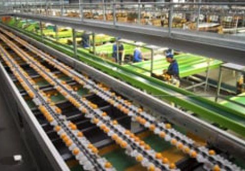 Standard Bank Customer Profile - ALG Boerdery Citrus Farming