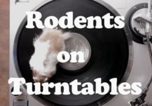 Rodents on Turntables - Live Nation
