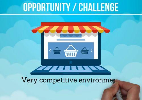 E-commerce Marketing Case Study SEM Wizard Altershops.gr