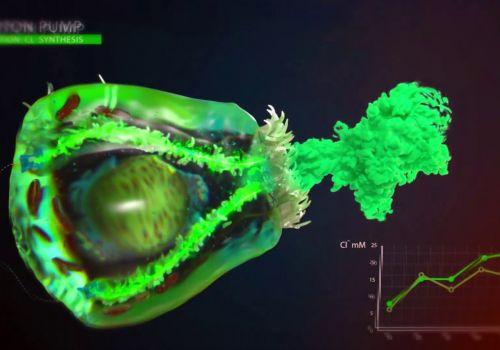 Nanobot Medical Animation Studio Showreel