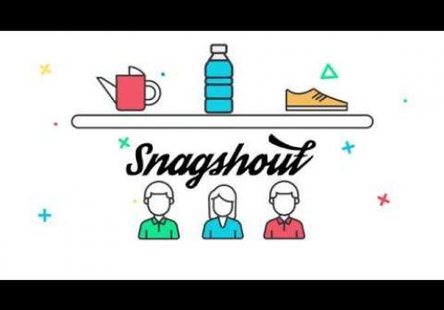 SnagShout Explainer Infographics