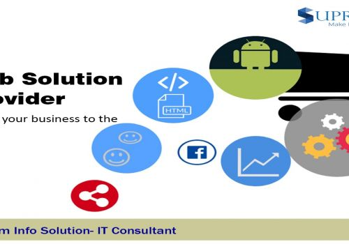 Website Developing and Designing Company   IT Consulting Company