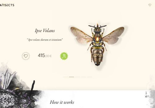 Steam Insects - preview of website