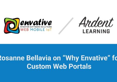 Why Envative for Custom Web Portals.