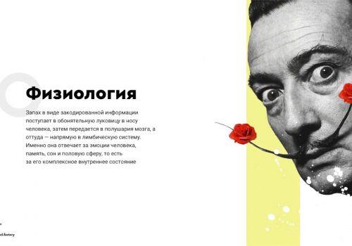 Presentation design for Ol.factory