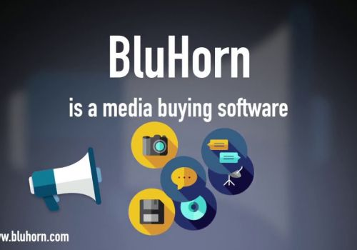 What is BluHorn?