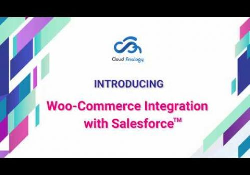 Woo Commerce™ Integration with Salesforce™