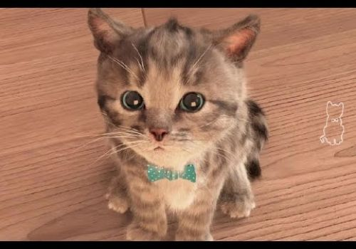 My Cute Little Pet   Baby Play Original and Lovely Kitten Kids Games   App For Children