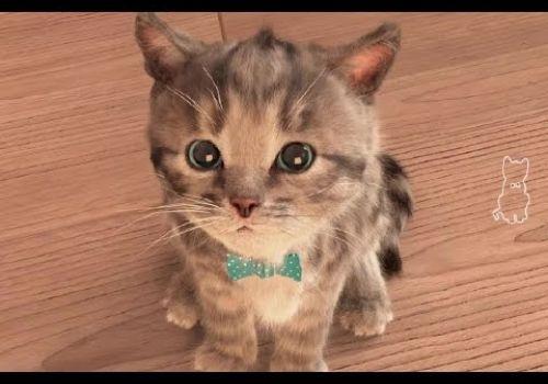 My Cute Little Pet | Baby Play Original and Lovely Kitten Kids Games | App For Children