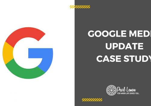 Google Medic Update & Client Support | Pearl Lemon SEO Case Study