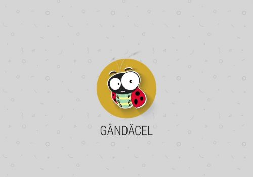 GÂNDĂCEL, Your Multipurpose Tool for Internal Management. And Much More.
