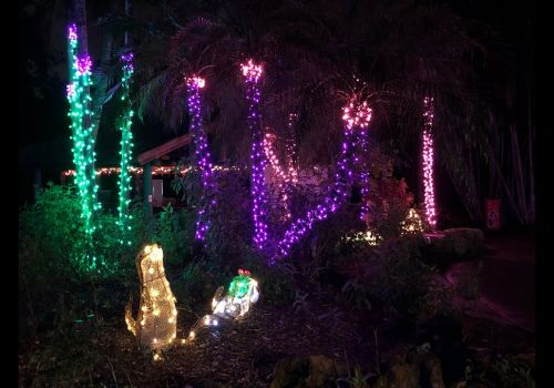 Garden of Lights 2019