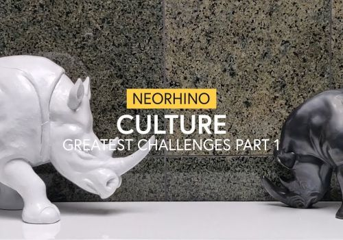 neoRhino Culture - Greatest Challenges (Part 1) - neoRhino IT Solutions