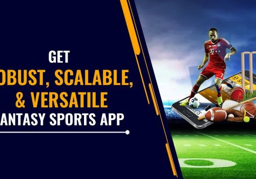 Make Your Own Fantasy Sports App & Website with BR Softech