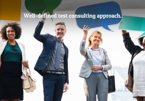 Test Consulting Services