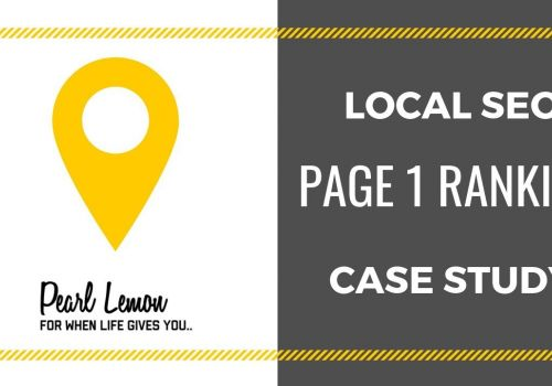 Storage Company #1 Google Ranking with Local SEO | Pearl Lemon SEO Case Study
