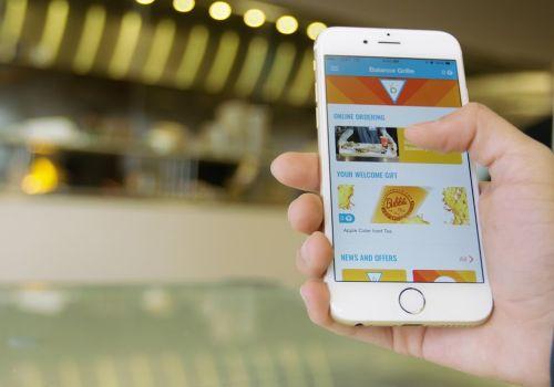 Balance Grille Mobile App Video 4K