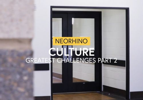neoRhino Culture - Greatest Challenges (Part 2) - neoRhino IT Solutions