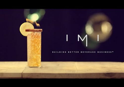 The DVI Group | Atlanta Video Production | IMI Promotional Video
