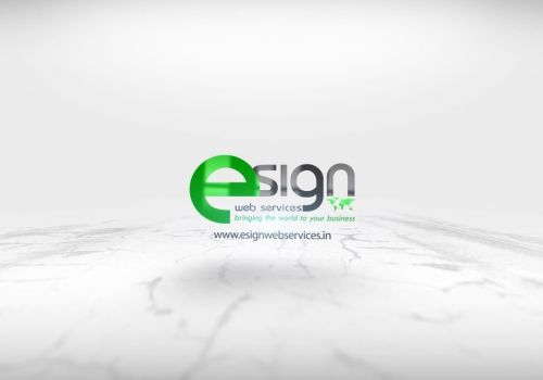 eSign Web Services - SEO Service Testimonial from Mr. Paul