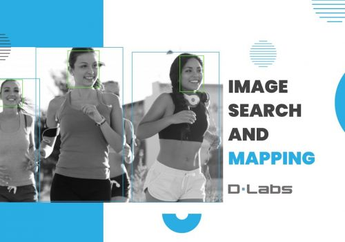 Image search and mapping - DLabs.AI