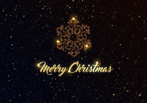 Webguru Infosystems Wishes Warm Greetings On Merry Christmas!