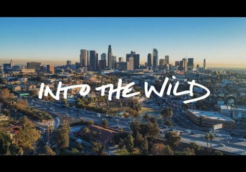 Into The Wild | $500,000 Pitch Winning Video