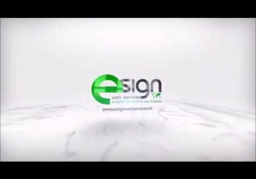 eSign Web Services - SEO Service Testimonial from Mr. Stefan