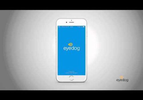 Eyedog Indoor Navigation - We call it Wayfinding 2.0