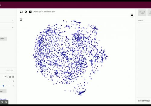 Embedding projector   applying t-SNE