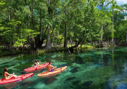 Discover The Nature of Things in Suwannee County, Florida