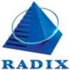 RadixWeb Logotype