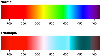 Older users have more difficulty distinguishing certain colors.